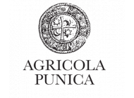 Agricola Punica
