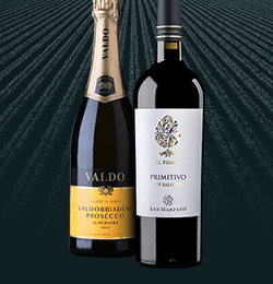The best wines for less than £10
