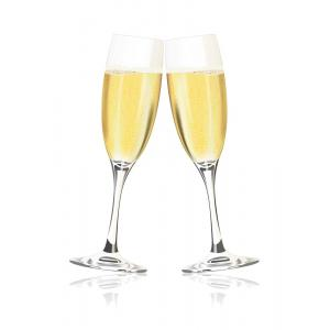 6 X 750ml Champagne and Bubbles Case Of Sparkles
