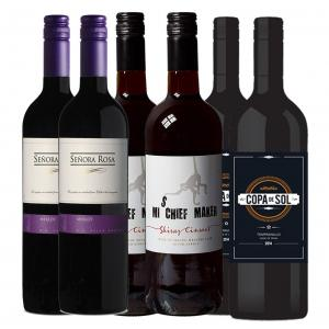 6 X 750ml Easy Drinking Red Wine Mixed Case