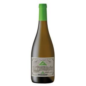 Anthonij Rupert Wyne Cape Of Good Hope Cape Of Good Hope Riebeeksrivier Chenin Blanc 2017