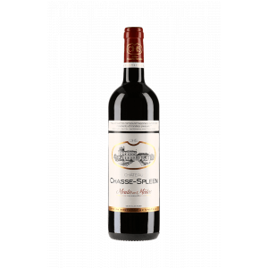 Château Chasse-Spleen Double Magnum 2013