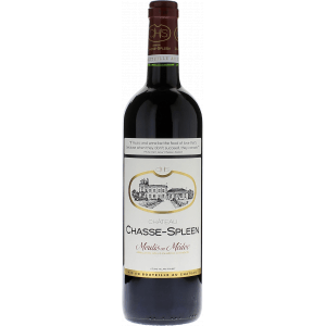 Château Chasse Spleen Magnum 2007