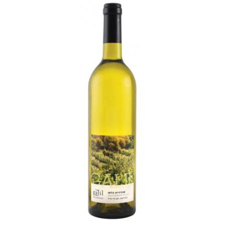 Galil Mountain Sauvignon Blanc 2013