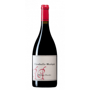 Philippe Pacalet Chambolle Musigny 2017
