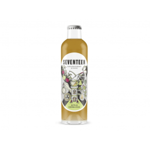 Seventeen Apple Kombucha 24x200ml